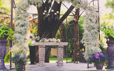 Secret Garden Phoenix AZ (14)