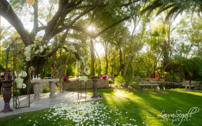 Secret Garden Phoenix AZ (8)