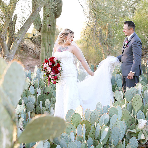 Palm Valley by Wedgewood Weddings Cactus Garden