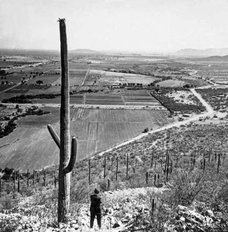 Old Time Phoenix - Secret Garden History